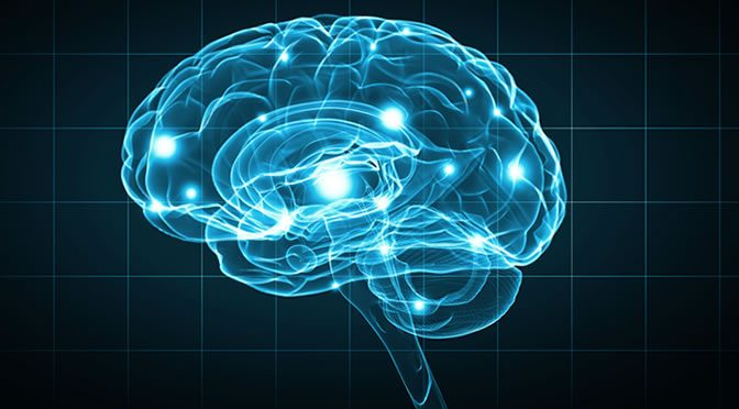 The Diet That Kills Memory And Cognitive Skills