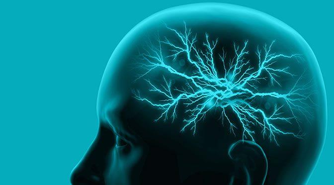3 Dietary Tweaks To Improve Your Memory